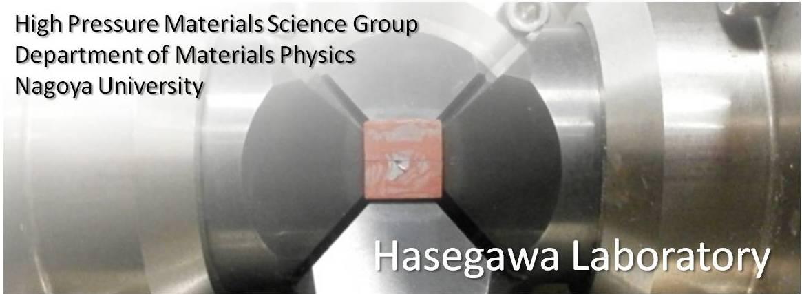 Hasegawa Lab